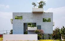 KTS Võ Trọng Nghĩa thiết kế nhà xanh: Không gian mát mẻ hiếm khi phải dùng điều hoà, hệ vườn khiến mọi nhà phố đều ao ước