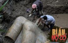 Mày mò khu ổ chuột, nhóm khảo cổ đào trúng phiến đá to, kỳ công đưa lên mới ngỡ ngàng với vật phẩm khổng lồ quý giá