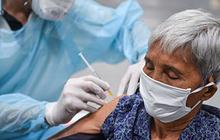 Người cao tuổi có nên tiêm vắc xin COVID-19? Trước khi đi tiêm cần chuẩn bị những gì?