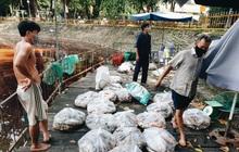 Cận cảnh 2 tấn cá chết bốc mùi trong công viên Hoàng Văn Thụ ở TP.HCM
