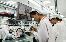 7 nhóm ngành dự báo sẽ tuyển dụng lượng lớn nhân sự trong quý 4/2021