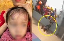 """Sở GD-ĐT thông tin gì về vụ """"bé gái 2 tuổi bị bạn học đánh dã man suốt 4 phút trong trường mầm non""""?"""