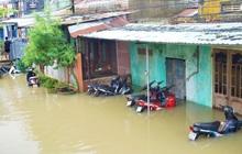 Mưa lũ khiến 5.400 ngôi nhà ở Quảng Nam bị ngập, 2.535 người phải sơ tán, 1 người mất tích