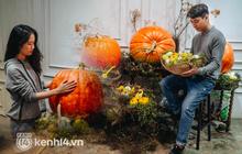 """Gần đến Halloween, người Hà Nội chi cả chục triệu mua bí ngô có cân nặng """"khủng"""" về trang trí nhà cửa"""