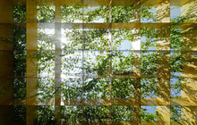 Nhà ở Đà Nẵng ngập từ cây đến nắng và gió, càng vào trong càng thấy đỉnh vì những cách xử lý không gian tuyệt vời