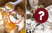 """Hai vụ tìm thấy dị vật khiến dân tình mất niềm tin vào bánh ngọt, phát hiện """"tiểu cường"""" còn chưa kinh hãi bằng phốt còn lại"""