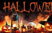 Halloween là ngày gì? Nguồn gốc, ý nghĩa lễ hội hóa trang Halloween