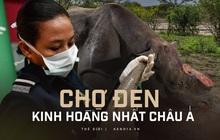 Bên trong chợ đen buôn lậu sừng tê kinh hoàng nhất châu Á: Không cách nào ngưng lại, kể cả khi đại dịch xuất hiện