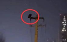 Hàng chục nghìn hộ dân bị mất điện vì một người đàn ông trèo lên cột điện để... gập bụng, hình ảnh được ghi lại khiến ai cũng ngán ngẩm