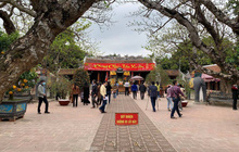 Lần đầu tiên đền Trần vắng nhất trong hơn 30 năm qua, phát ấn theo cách đặc biệt