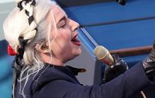 Ca sĩ Lady Gaga treo thưởng nửa triệu đô tìm 2 chú chó cưng