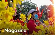 """Mobiography: Cái Tết đầy lạ lẫm nhưngcũng rất thú vị của chàngtrai """"mắc kẹt"""" ở Sài Gòn"""