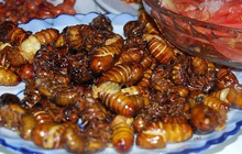 Những đặc sản đậm chất dân dã, ăn một lần nhớ mãi với giá chỉ từ 15.000 đồng ở Bình Phước