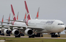 "Hãng hàng không Qantas thử nghiệm ""hộ chiếu Covid-19"" cho chặng bay quốc tế"