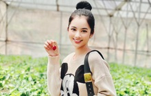 Đến lượt Cẩm Đan - gái đẹp 2k2 check in Đà Lạt, đi cùng ai mà thả thính ngọt thế này?