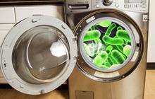 Cẩn thận với 3 ổ vi khuẩn tưởng không liên quan nhưng lại là tác nhân gây bệnh phụ khoa