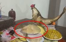 """Mỏi mắt tìm đĩa thịt gà trong mâm cỗ: chủ nhân xếp quá """"đỉnh"""" nên ai cũng nhìn nhầm thành đĩa xôi"""