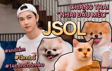 """Jsol - chàng ca sĩ """"nhai đầu mèo"""" cực hot trên TikTok: Mỗi tháng tốn 20 triệu nuôi 14 con thú cưng, stress lắm nhưng không bỏ được!"""