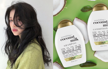 6 loại dầu gội không chứa chất sulfate làm hại tóc, hội tóc nhuộm hay uốn càng cần phải dùng