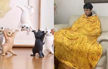 """4 món đồ gây bão MXH tuần qua: Tượng chó mèo tập thể dục siêu """"nhây"""", chăn bánh xèo đậm chất hoàng gia"""