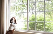 7 mẹo đơn giản giúp nhà bạn luôn khô ráo trong những ngày thời tiết nồm ẩm