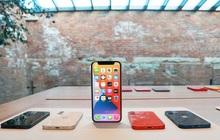 """Thị trường smartphone cao cấp Việt Nam: Khi iPhone ngày càng """"vô đối"""""""