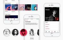 Cách đăng ký nhận 3 tháng dùng thử miễn phí Apple Music trên iPhone