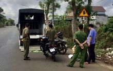 Hai thiếu niên tử vong sau khi tông vào gốc cây ven đường