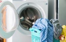 """Bỏ 60 triệu mua máy giặt sấy 2 trong 1, mẹ Hà Nội phát hiện đồ trong túi giặt chưa khô và lời lý giải """"hợp tình hợp lý"""""""