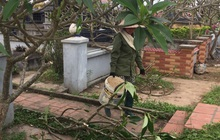 Hải Phòng: Hơn 100 ngôi mộ bị đập phá bát hương, lọ hoa