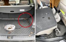 """Để quên bịch cua đồng trên ô tô, khổ chủ suýt ngất khi mở xe ra: Dân mạng sợ hãi đến mức """"bịt mũi"""" vì lý do này"""