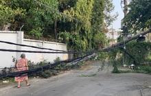 Trụ điện đổ đè trúng cây xanh, 1 người phụ nữ thoát chết ở Sài Gòn