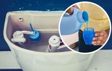"""Người tinh tế luôn giữ toilet thơm tho, sạch sẽ với 8 """"tuyệt chiêu"""" dưới đây"""