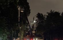 Truy tìm xe tải gây đổ trụ điện khiến hàng trăm hộ dân mất điện ở Sài Gòn