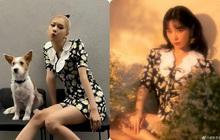 """Rosé (BLACKPINK) gây sốt bởi váy hoa cúc 40 triệu đồng, nhưng netizen lại so kè nàng với cao thủ """"hack"""" tuổi này"""