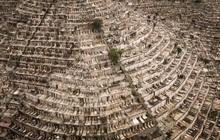 """Những """"ngôi mộ người sống"""" đắt cắt cổ ở Trung Quốc: Người """"không dám chết"""", kẻ """"chốt đơn"""" ngay kẻo hết"""