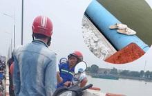 Ngỡ ngàng trước người phụ nữ để lại xe máy rồi nhảy xuống sông Đồng Nai