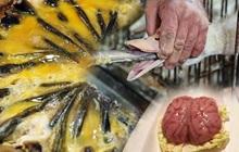"""Có những món ăn được xem là """"đỉnh cao"""" ẩm thực nhưng quá trình làm nên chúng lại vô cùng dã man và tàn nhẫn"""