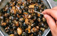 Ốc rất giàu chất dinh dưỡng nhưng có 4 loại thực phẩm tuyệt đối không ăn cùng kẻo rước họa vào thân