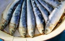 """Món cá này rất ngon nhưng lại có nguy cơ gây ung thư cao bậc nhất, được WHO xếp vào """"danh sách đen"""" từ lâu"""