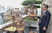 Biệt thự phố cổ Hà Nội của đại gia thời trang Chương Tailor: Xây bể cá Koi 5 tỷ ở ban công, dành nguyên tầng điều hòa nuôi chim đột biến