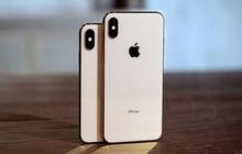 """iPhone giá rẻ đã """"chết"""" tại Việt Nam"""