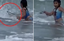 """Đang tắm biển, bé gái hoảng loạn chạy ngay lên bờ, xem kỹ đoạn clip mới thấy đứa trẻ kề cạnh ngay bên """"Tử thần"""""""
