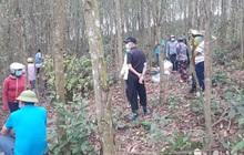 Phát hiện thi thể người đàn ông trong tư thế treo cổ ở rừng keo