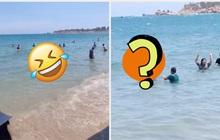 Đi tắm biển nhưng sợ đen da, cô gái nghĩ ra một cách khiến dân mạng vừa buồn cười, vừa tranh cãi: Làm vậy nguy hiểm lắm bạn ơi!