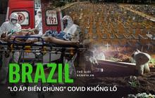 """""""Lò ấp biến chủng"""" Covid của Brazil: Thảm họa không khác gì một """"Fukushima sinh học"""", quả bom nguyên tử đe dọa cả nhân loại"""