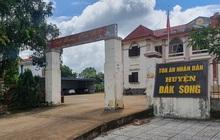 Chánh án TAND tỉnh Đắk Nông lên tiếng việc 1 thẩm phán lập 57 hồ sơ khống