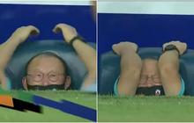 """Thầy Park và loạt biểu cảm dù đang """"nổi điên"""" với cầu thủ đội bạn cũng cưng xỉu mấy má ơi"""