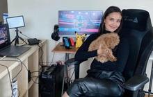Cựu Hoa hậu Thế giới người Philippines bất ngờ chuyển hướng sang làm streamer game