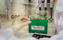 Thái Bình ghi nhận 4 ca tái dương tính với SARS-CoV-2